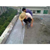 供应顺德外墙阳台楼顶防水补漏乐从建筑防水补漏材料