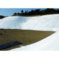 土工布|土工膜(图)|泰安土工布生产厂家