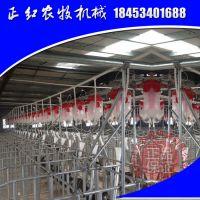 自动上料系统 自动饲喂料线 正红养猪设备大全