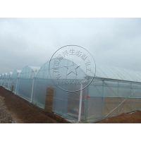青州瀚洋蔬菜温室建造—拱形薄膜连栋温室大棚