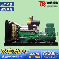 潍坊300kw柴油发电机组 全铜上海发电机养殖用发电机组配无刷电机 正品保证