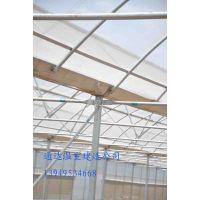 什么是日光温室 日光温室的好处 通达建造日光温室 蔬菜温室