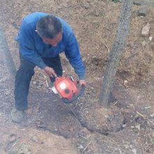 宏兴牌热销移树机 果树挖树机 挖树机批发