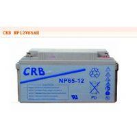 NP65-12蓄电池 12V65AH美国CRB蓄电池