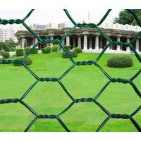 镀锌六角网价格、镀锌六角网批发、宏业丝网