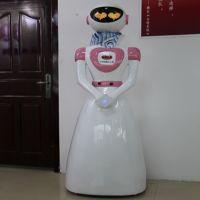 深圳市机器人厂家 厂家批发迎宾机器人 餐厅机器人 铁艺变形金刚 