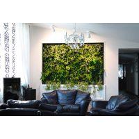 北京绿魂谷生态立体绿化植物墙植物壁画植物屏风