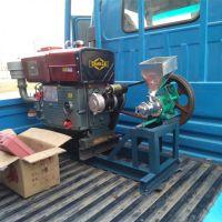 鼎信大米膨化机 北京直销流动型柴油膨化机