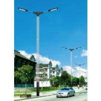 农村大建设西藏林芝飞鸟太阳能路灯价格,西藏林芝LED太阳能路灯厂家