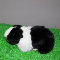 仿真动物填充毛绒玩具仓鼠儿童节日礼物可来图定制