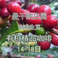 曼干纳庄园有机精品咖啡豆云南小粒咖啡2015年精品14-18目