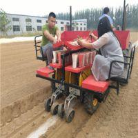 宁津县金利达机械制造有限公司专业生产田耐尔甜菜专用移栽机,是目前国内最成熟的甜菜移栽机生产厂家