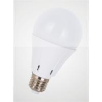 供应湛江湛龙光电LED球泡灯(高性价比,物美价廉)