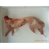 山东厂家直销经营 为广大客户提供新鲜卫生 兔肉
