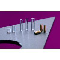 NSG自聚焦成像透镜(G-lens) 用于内窥镜
