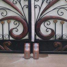 东莞专业的别墅开门机安装公司 冷雨LEY厂家自产自销庭院电动平开车库门 可视对计开门机