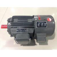 供应上海德东电机YVF2变频三相异步电动机 高效节能