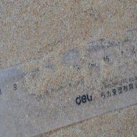 青岛铸造海沙厂家 40-70目耐火材料厂专用海砂 天然沙价格