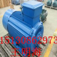 供应衡水永动YE3-132M-4-7.5KW超高效率节能三相异步电动机