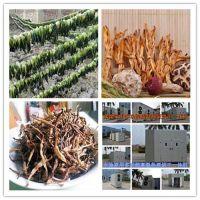 潞西食品烘干、福瑞斯永淦厂家直供、食品烘干设备
