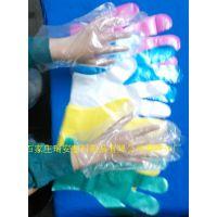 供应多元化批发零售一次性PE手套品牌制造商