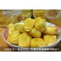 正宗海南特产 三亚新鲜精品菠萝蜜水果木菠萝青皮马来一号21-23斤