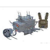 温州皖开电力供应优质10KV智能真空断路器 分界开关