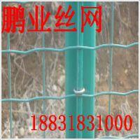 养殖围栏网荷兰网——具有口碑的绿色养殖铁丝围网供应商排名