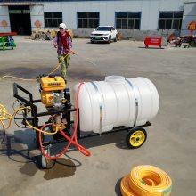 汽油机动力喷雾器 高压喷雾器 富民牌