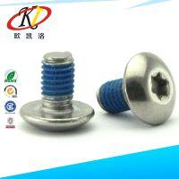 厂家生产销售 大扁头内梅花螺丝  涂胶不锈钢螺丝