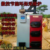 数控锅炉 水暖地暖锅炉 家用燃煤采暖节能环保锅炉 暖气炉