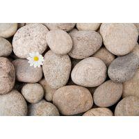 河卵石厂家供应造景河卵石园艺卵石