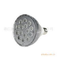 供应厂家直销LED大功率射灯  LED灯杯 PAR38 室内装饰照明灯具