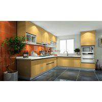 蒂罗迩专业定制整体橱柜、现代厨柜、板式橱柜