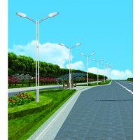 LED太阳能路灯绵阳市建设新农村 飞鸟定制