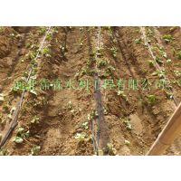 滴管带管件价格|节水灌溉|襄阳襄城区大棚蔬菜滴水管