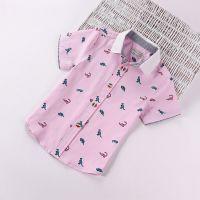 外贸原单童衬衫 男童 z家韩版可爱圆点印花儿童短袖衬衫 夏款