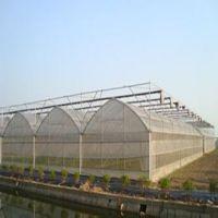 陕西/山西/甘肃专业膜连栋温室建设 膜连栋温室建设方案