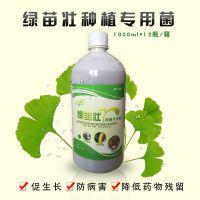 河南直销益生菌 在火龙果上的作用 绿苗壮在种植上的应用和使用方法