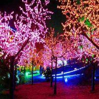 供甘肃西固区景观灯和七里河区景观树灯