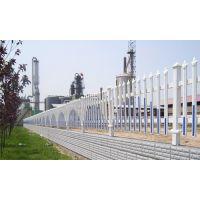 市政绿化草坪护栏 PVC草坪护栏 别墅花园草坪围栏 塑钢护栏围栏
