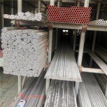 【金聚进】304不锈钢毛细管批发 优质不锈钢小管