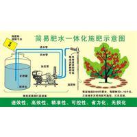 水溶液体肥设备_水溶液体肥加工设备_越盛肥料设备(多图)