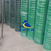 浩洲生产散养鸡网围栏|农场荷兰网圈地铁丝网|绿色养殖围网护栏网