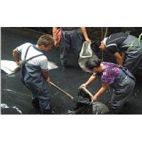 成华区万年场疏通管道,清掏化粪池,疏通马桶,厨房疏通,改管换管