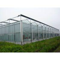 厂家批发河北蔬菜大棚 冬暖式大棚 专家设计 十年不锈13920286607