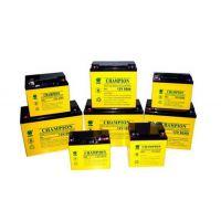 铅酸胶体蓄电池NP65-12
