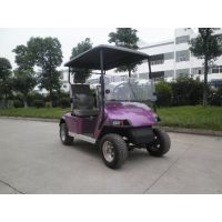 无锡德士隆供应电动高尔夫球车2座4座6座厂家直销