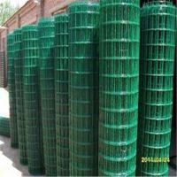 现货供应包塑铁丝网 绿色围栏网 养殖场围栏