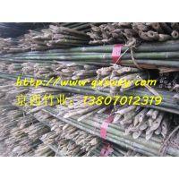 产地直销专用于支撑密植苹果树苗用的4米小竹竿
